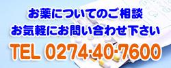 プラス薬局-藤岡白石店-